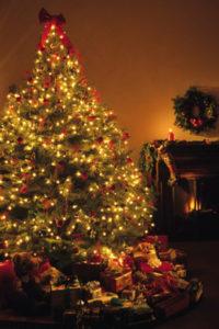 How to Eliminate Fresh-Cut Christmas Tree Fire Threats